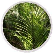 Jungle Ferns Round Beach Towel