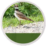 Killdeer Round Beach Towel
