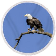King Of The Sky Round Beach Towel