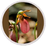 Lady Slippers At Moore State Park 2 Round Beach Towel