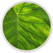 Leafy Green Round Beach Towel