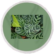Light And Dark Green Leaves Round Beach Towel