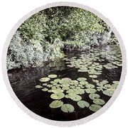 Lily Pads On Dark Water Round Beach Towel
