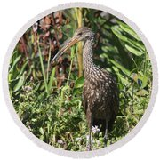 Limpkin And Apple Snail Round Beach Towel