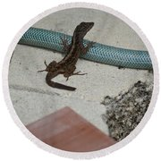 Lizard Round Beach Towel