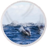 Long-beaked Common Dolphins Round Beach Towel