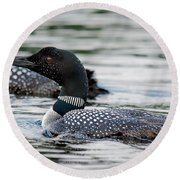 Loons Round Beach Towel
