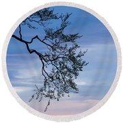 Low Angle View Of Tree At Dawn, Dark Round Beach Towel