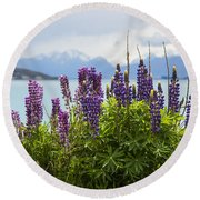 Lupin Blooms Round Beach Towel