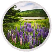 Lupin Flowers In Newfoundland Round Beach Towel by Elena Elisseeva