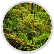 Lush Temperate Rainforest Round Beach Towel