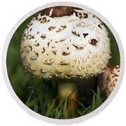 Magic Mushroom Round Beach Towel