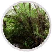 Magical Tree In Forest Round Beach Towel