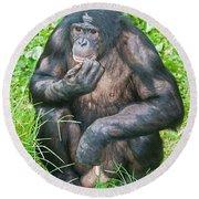 Male Bonobo Round Beach Towel