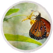 Queen Butterfly Danaus Gilippus Round Beach Towel