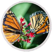 Monarch Danaus Plexippus Round Beach Towel