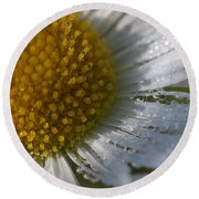 Mornings Dew Round Beach Towel