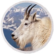 Mountain Goat Portrait On Mount Evans Round Beach Towel