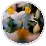 Narcissus Tazetta Round Beach Towel
