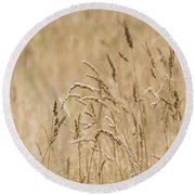 Nature Landscape Round Beach Towel