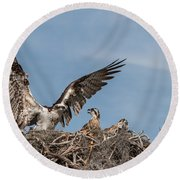 Osprey Arriving Home Round Beach Towel