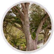 Oak Alley Backyard Round Beach Towel