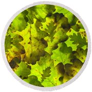 Oak Leaf Background Round Beach Towel