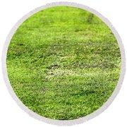 Old Green Grass Round Beach Towel