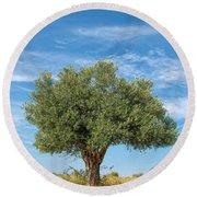 Olive Tree Round Beach Towel