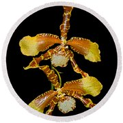 Orchid Series 104 Round Beach Towel