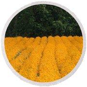 Oregon Orange Field Panoramic Round Beach Towel