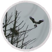 Osprey Love Round Beach Towel