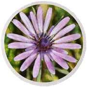 Oyster Plant Round Beach Towel