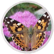 Painted Lady Butterfly Up Close Round Beach Towel