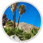 Palm Oasis On Borrego Palm Canyon Trail In Anza-borrego Desert Sp-ca Round Beach Towel