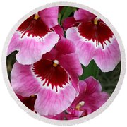 Pansy Orchid 1 Round Beach Towel