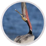 Pelican Head Throw Round Beach Towel