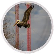 Pelican In Flight Round Beach Towel