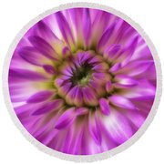 Pink Dahlia Close Up Round Beach Towel