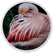 Pink Flamingo Round Beach Towel