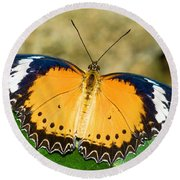 Plain Tiger Butterfly Round Beach Towel