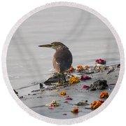 Pond Heron Round Beach Towel