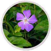 Pretty Purple Pinwheel Round Beach Towel