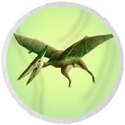 Pterodactyl, Cretaceous Dinosaur Round Beach Towel