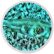 Puffer Fish Round Beach Towel