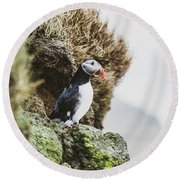 Puffins On The Islet Of Mykines, Faroe Round Beach Towel