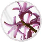 Purple Hyacinth Macro Shot. Round Beach Towel
