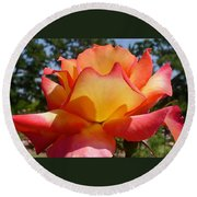 Rainbow Sorbet Rose Close Up Round Beach Towel by Denise Mazzocco