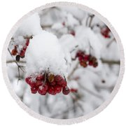 Red Fruit With Snow Round Beach Towel