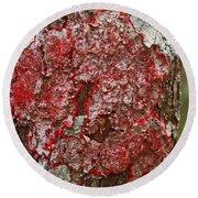 Red Lichen  Round Beach Towel